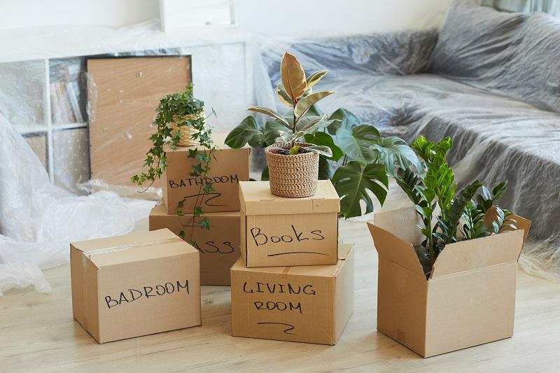 doboz csomagolás tippek költözéshez